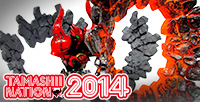 [Tamashii Nation] 7th reviews of the exclusive item: Tamashii EFFECT IMPACT Magma Ver.