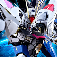 "Special Features We published the details of ""METAL BUILD Strike Freedom Gundam"" in the special page! The pre-order is available from July 1st."