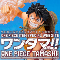 Special Features ONETAMA!! ONE PIECE TAMASHII