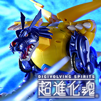 "Column series latest information! 1/20 Shop launch ""Super Evolution Soul 02 Metal Garurumon"" Snapshot Review"
