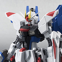 THE ROBOT SPIRITS <SIDE MS> FREEDOM GUNDAM