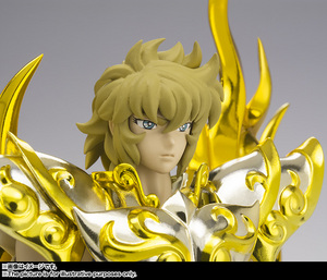 Saint Cloth Myth EX LEO AIOLIA(God Cloth) 07