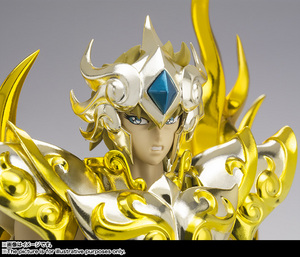 Saint Cloth Myth EX LEO AIOLIA(God Cloth) 11