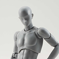 S.H.Figuarts BODY KUN DX SET (Gray Color Ver.)