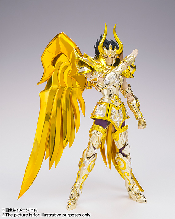 Saint Cloth Myth EX CAPRICONE SHURA(GOD CLOTH) 03