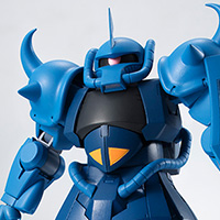 THE ROBOT SPIRITS <SIDE MS> MS-07B グフ ver. A.N.I.M.E.