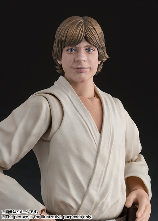 S.H.Figuarts ルーク・スカイウォーカー(A NEW HOPE) 06