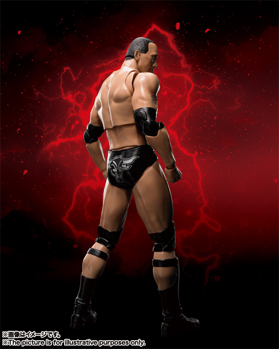 S.H.Figuarts The Rock 03