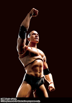 S.H.Figuarts The Rock 07
