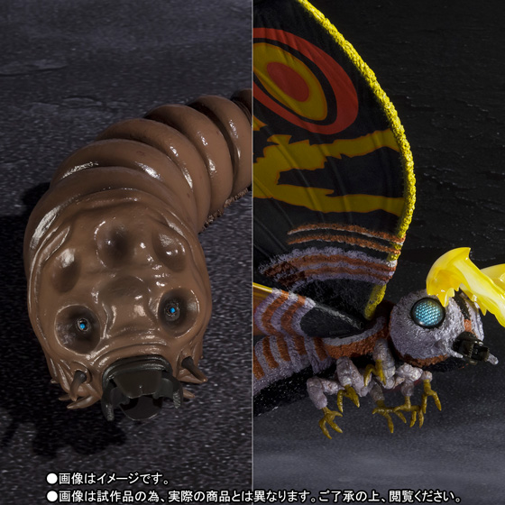 S.H.MonsterArts モスラ(成虫)&モスラ(幼虫) Special Color Ver. 01