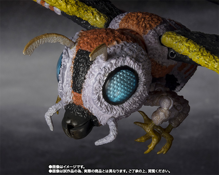 S.H.MonsterArts モスラ(成虫)&モスラ(幼虫) Special Color Ver. 05