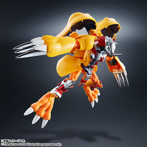 Super Evolution Soul 01 WarGreymon 08