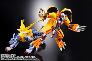 Super Evolution Soul 02 Metal Garurumon 08
