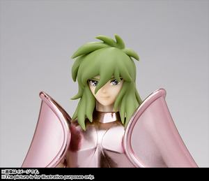 Saint Cloth Myth Andromeda Instant Early Bronze Cloth <Revival Edition> 04